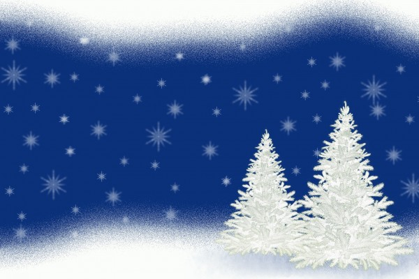 christmas-tree-3006325_1920